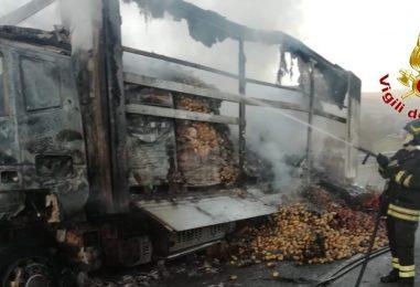 VIDEO/ Autocarro in fiamme sulla A16: salvo il conducente