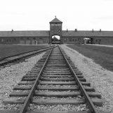 """""""Ciò che resta della memoria"""", la follia nazista nelle foto degli alunni del """"Mancini"""""""