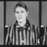 La nota di Matteo Pierro sui martiri dell'Olocausto: Lo sterminio dimenticato dei Testimoni di Geova
