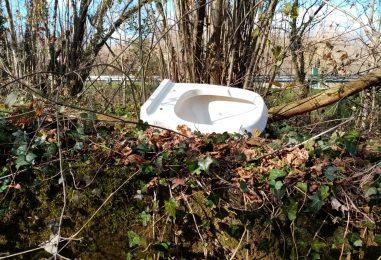 Video / La strada della vergogna tra rifiuti e vegetazione fuori misura si trova in una traversa di via Annarumma