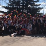 Carri allegorici, balli e la tradizionale quadriglia per il Carnevale di Montemiletto