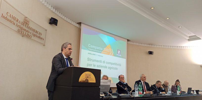 Distretti Rurali, Petracca: bene l'Irpinia con quattro progetti approvati