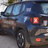 Controlli, sanzioni e denunce: carabinieri forestali in azione