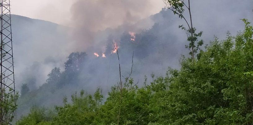 FOTO / Montoro, in fiamme 10 ettari di vegetazione: due canadair in azione