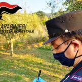 Pozzo con acqua avvelenata a Pannarano, sequestro e indagini