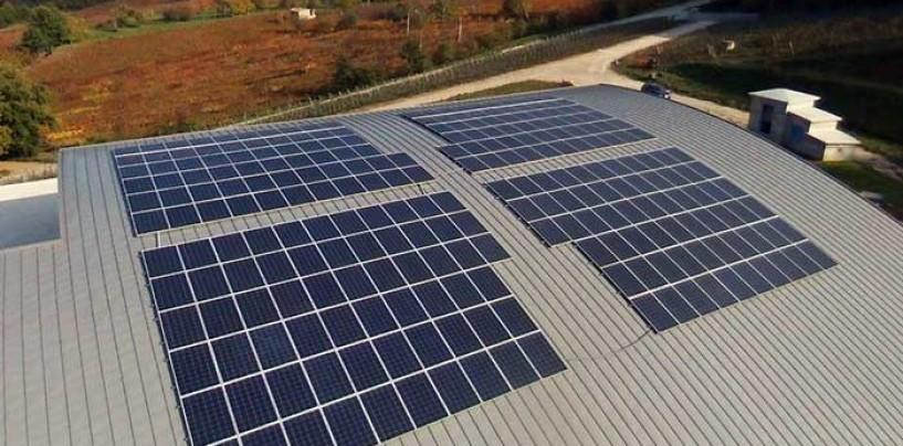 """Energia Green: l'azienda irpina EAI firma uno dei primi """"impianti a isola"""" d'Italia per la cantina Vinosìa"""