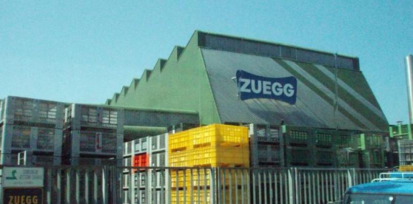 Zuegg, buone notizie per i lavoratori di Luogosano
