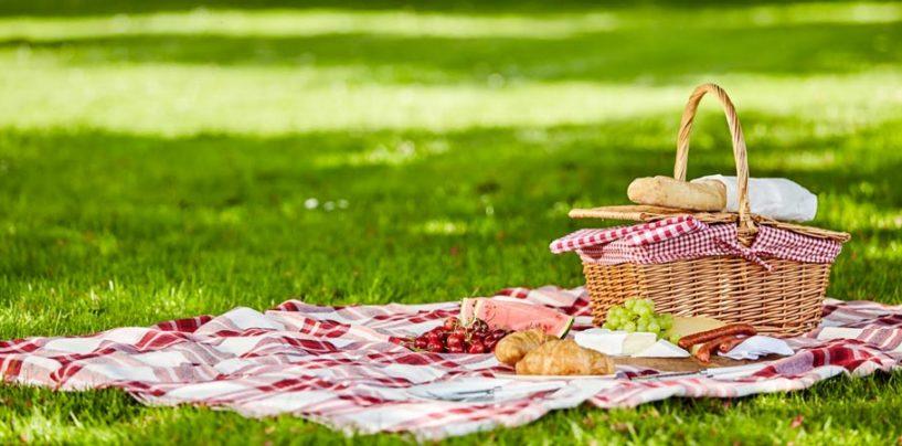Il picnic perfetto, ecco cosa non deve mancare dal cestino