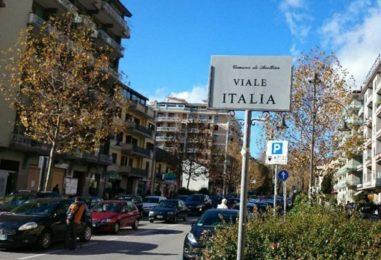 Nuovi platani a Viale Italia entro fine anno