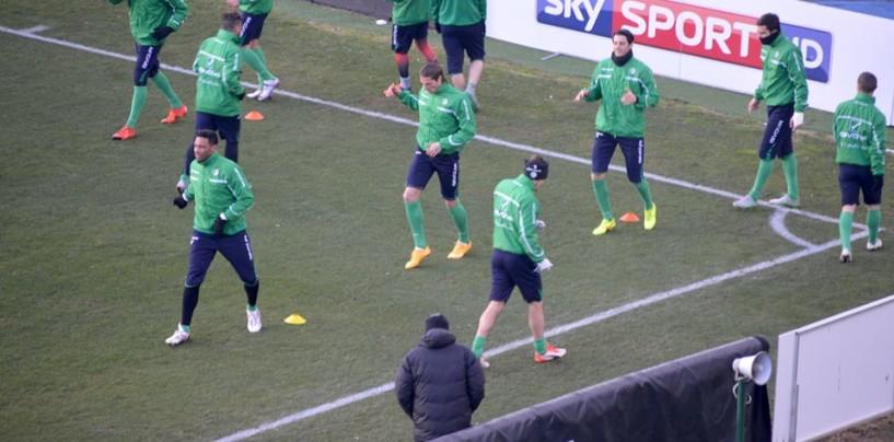 Avellino Calcio – Lupi in campo verso il Bari: alla ripresa out in due