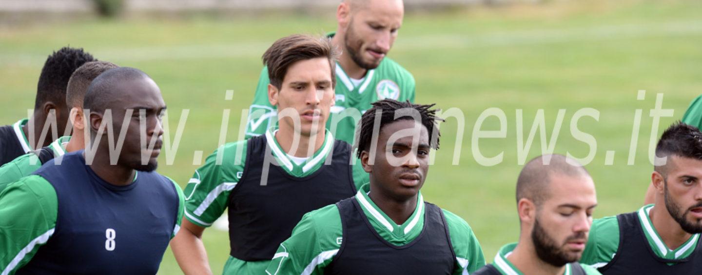 Avellino Calcio – Lupi, primo giorno di lavoro: la fotogallery di Irpinianews