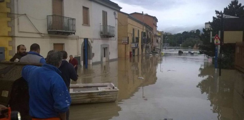 Avellino Calcio – Gli alluvionati del Sannio gratis allo stadio contro l'Ascoli
