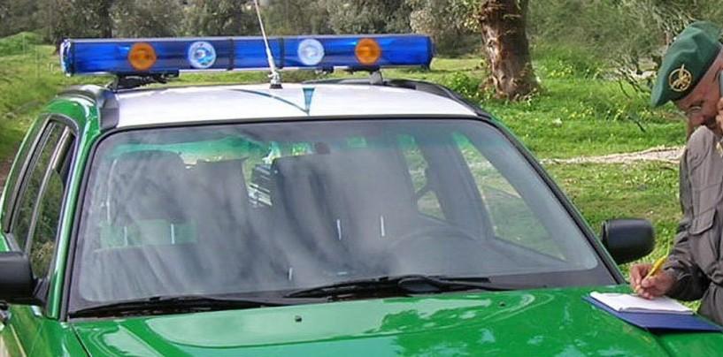 Operazione antibracconaggio nei boschi di Montoro