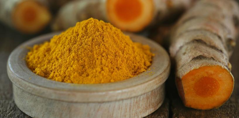 Olio d'oliva, cacao, curcuma: la guarigione delle ferite passa anche dal cibo