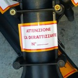Derattizzazione in provincia di Avellino, il programma degli interventi
