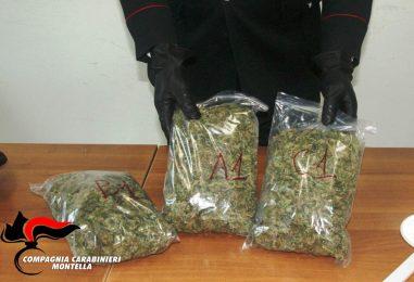 Detenevano oltre 400 grammi di Marijuana, arrestati due 20enni