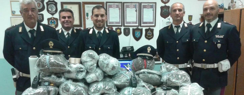 A16, arrestati due trafficanti di droga. Sequestrato mezzo milione di euro di marijuana