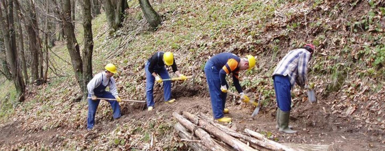 """Turn over forestali, la Uil: """"Non creiamo false aspettative tra i lavoratori"""""""