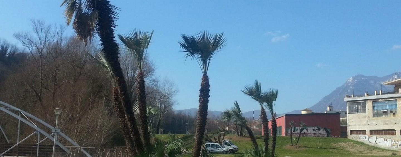 """""""Urban nature"""": ad Avellino l'evento organizzato dal WWF"""