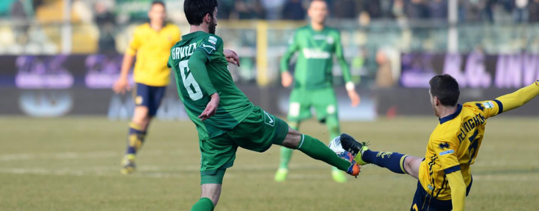 Avellino Calcio – Scatta l'allarme Gavazzi: Tesser in ansia per il centrocampo
