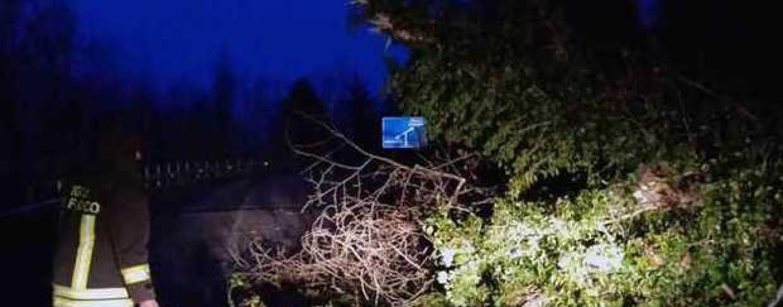 Maltempo, il forte vento sferza l'Irpinia nella notte: si contano i danni