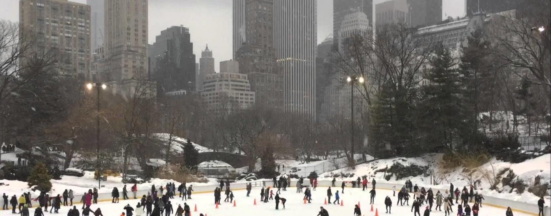 """""""New York è una città magica. In Irpinia una società che non premia chi lavora duro"""""""