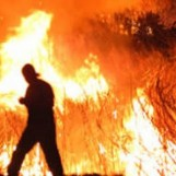 VIDEO/ Incendi in Irpinia, piromane beccato in flagranza ad Atripalda