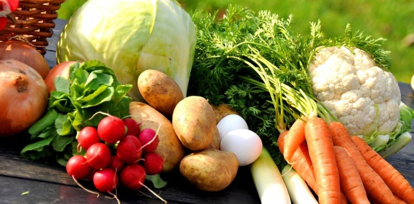 Tendenze alimentari: è boom in Italia per alimenti bio, senza glutine e senza Ogm