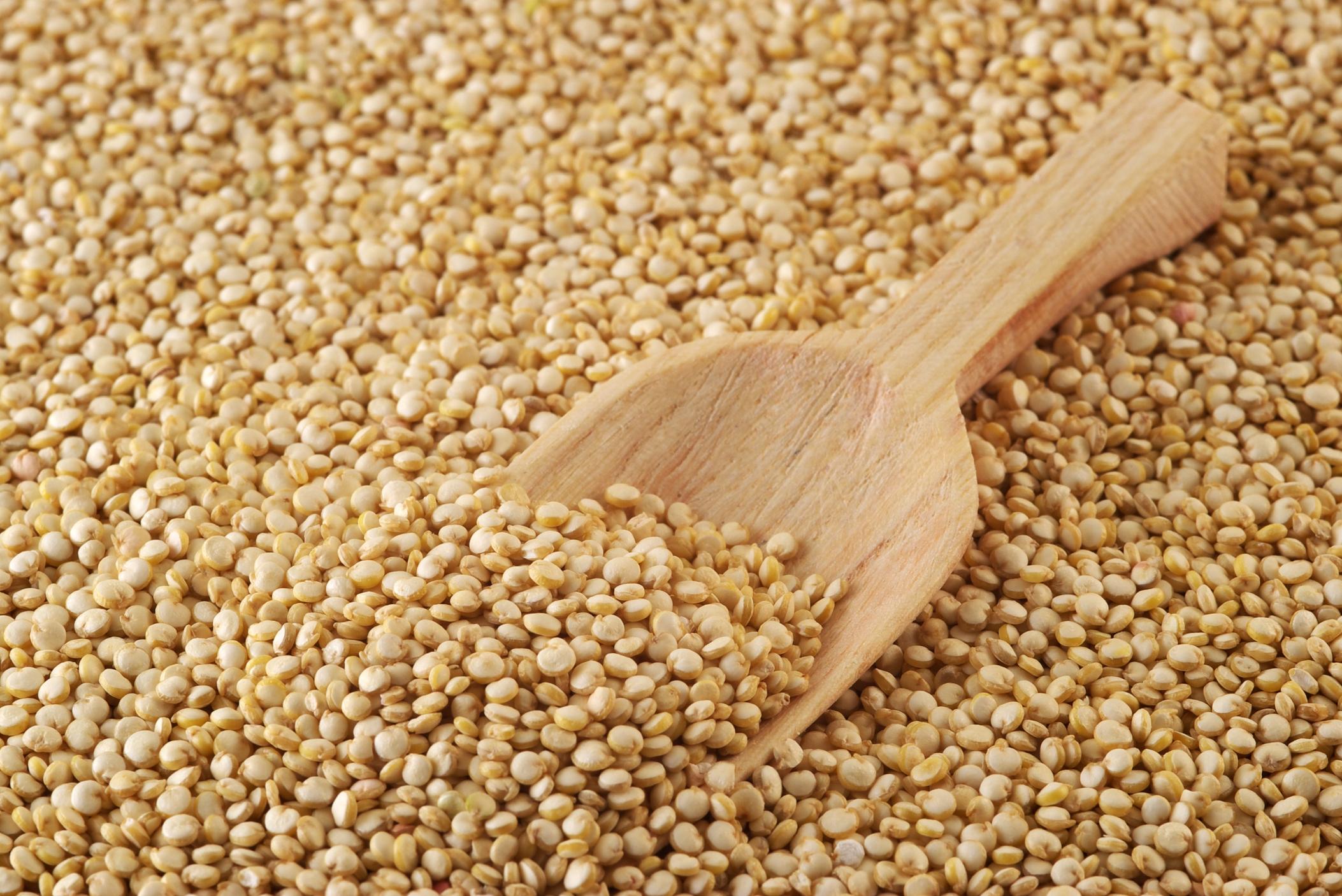 quinoa no glutine
