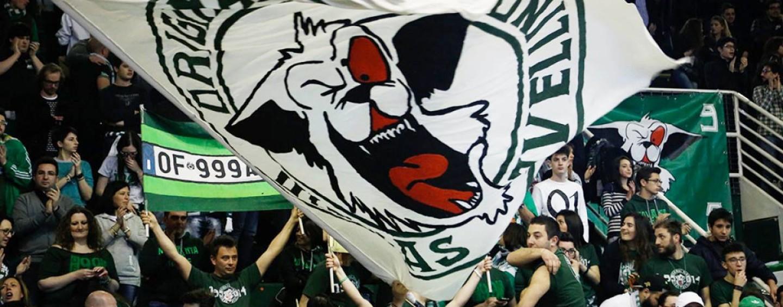 Basket Scandone, rinviata la partita di sabato contro Varese?