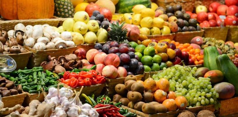 Cibo Buono, Pulito, Giusto: la filosofia di Slow Food Avellino.