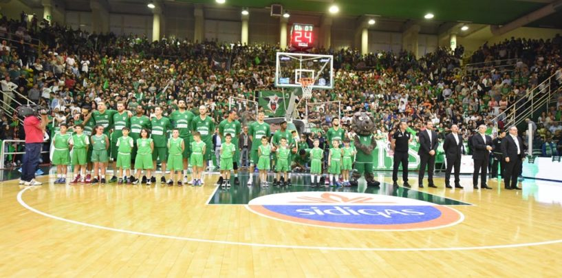 Sidigas Avellino, vale 100mila euro l'ingresso in Champions