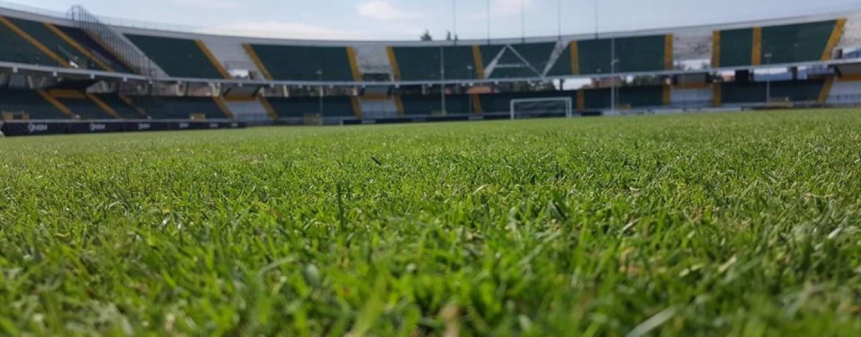 Avellino Calcio – Serie B, terreni di gioco: la classifica aggiornata al 25° turno
