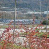 Ipotesi nuovo impianto rifiuti a Pianodardine-Borgo Ferrovia: la petizione dei cittadini a Candelmo