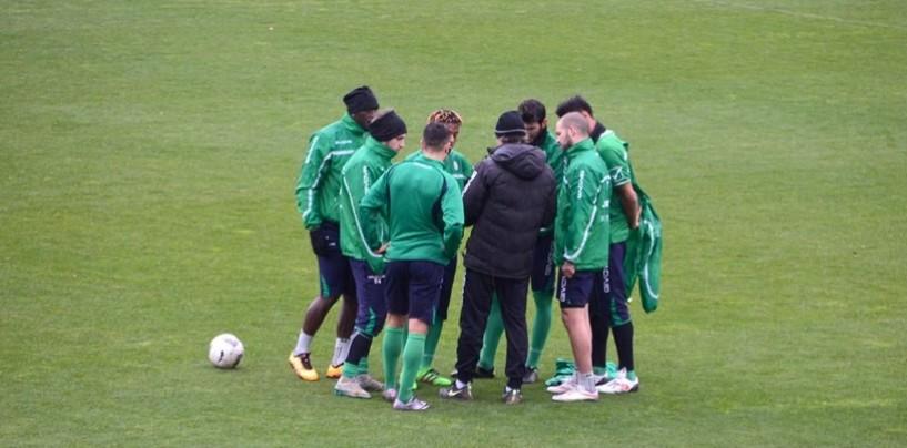 Avellino Calcio – Strukelj al lavoro in attesa di Tesser: le ultime dal campo