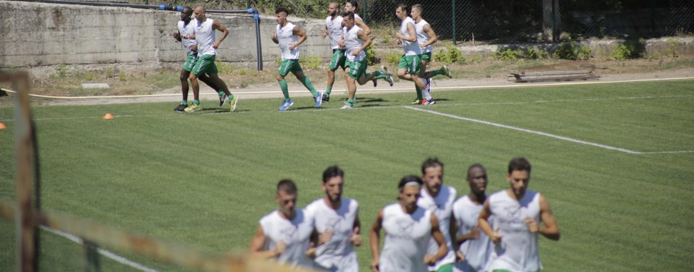 Avellino Calcio – I lupi si radunano a Paestum: squadra in campo nel pomeriggio