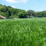 Avellino Calcio – Il derby vale la salvezza: lupi in ritiro