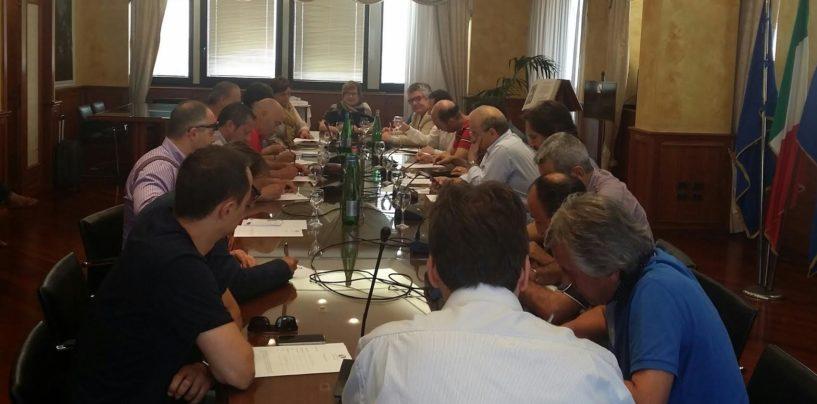 """Industria Italiana Autobus, tavolo in Regione. D'Amelio: """"Solleciteremo incontro al ministero"""""""