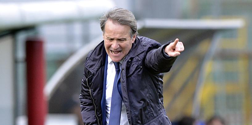 Avellino Calcio – Castaldo verso il forfait: Tesser prepara la coppia inedita