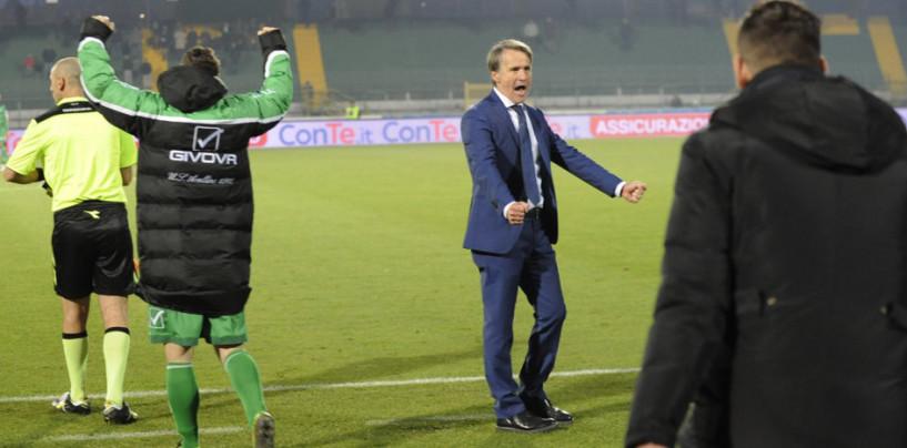Avellino Calcio – L'analisi. Panettone, ingresso nella storia e rivincita: è il Natale di Tesser