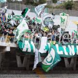 LIVE CINO E LILLO DEL DUCA/ Ascoli-Avellino in diretta