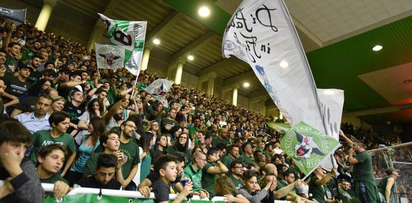 Sidigas, a Caserta la carica dei 300. Derby sold-out nel settore ospite