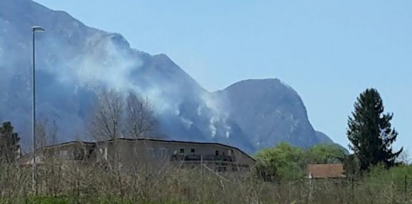 Vasto incendio sul Monte Partenio, in azione la Forestale