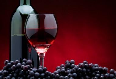 Al via il Master of Food, sei lezione sul pianeta vino