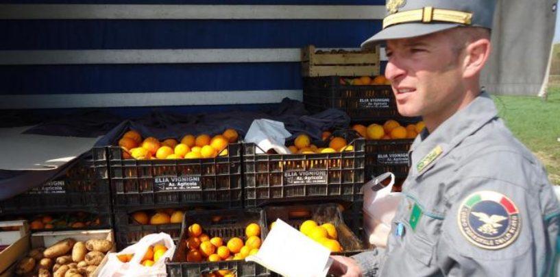Blitz della Forestale nei mercati di Atripalda e Grottaminarda, sequestri e multe
