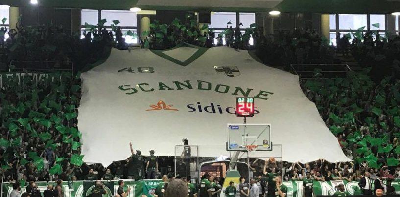 Scandone, la Serie B è il piano A. Gruppo di tifosi vicini a Dell'Anno interessati all'Avellino