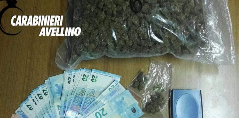 Coltivava marijuana in casa: nei guai un 23enne