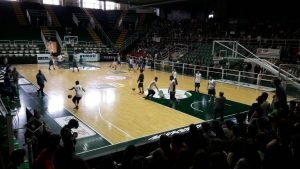 social basket 1