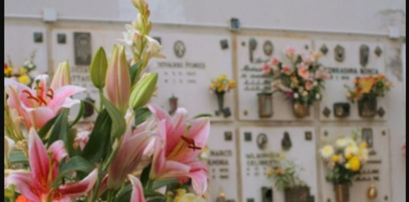 Ognissanti, controlli a tappeto della Finanza: evasione fiscale e vendita illegale di fiori