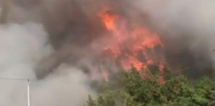 Incendi, arrestato un piromane a Solopaca